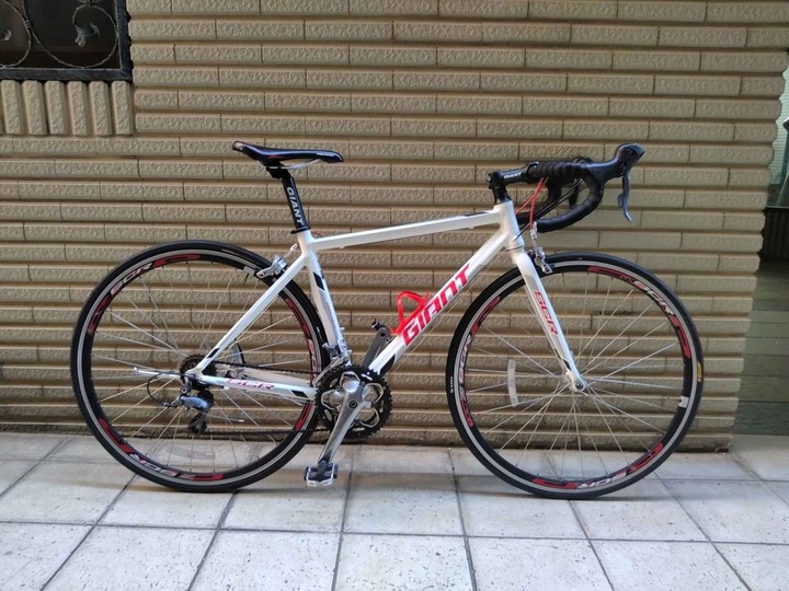 Giant scr2, size s
