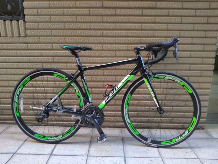 giant scr1, size s
