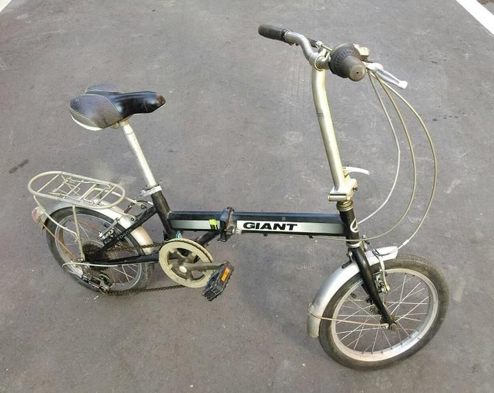 Ginat 捷安特 FD606 小折 折疊車 16吋 腳踏車 折疊腳踏車  6段變速