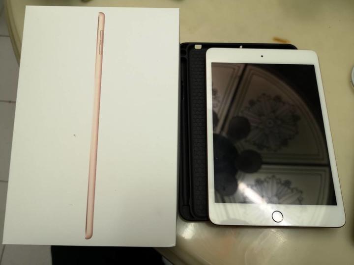 iPad mini 5 256G wifi 玫瑰金