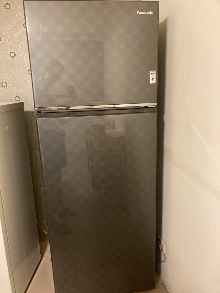 國際232L變頻雙門冰箱 NR-B239TV