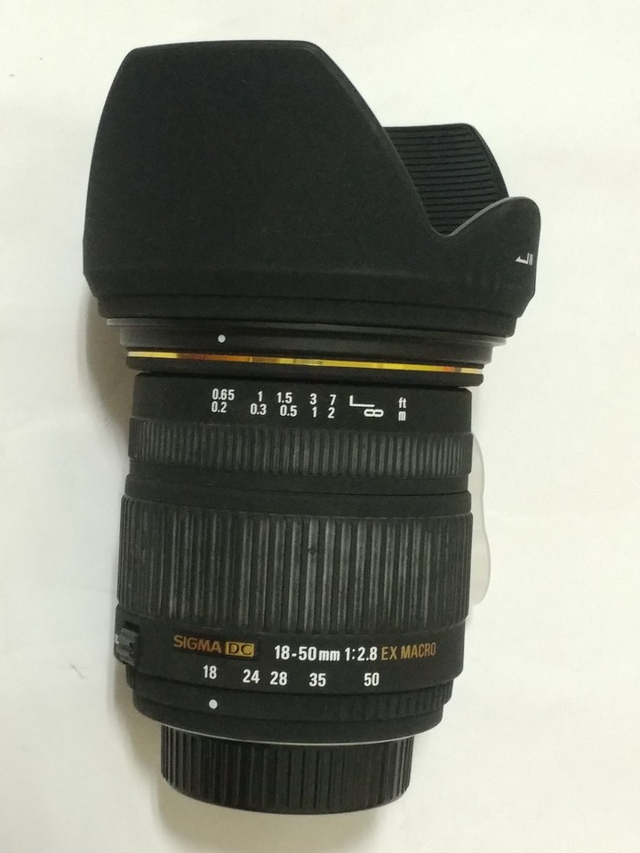 Sigma 18-50mm F2.8 EX DC Macro For Nikon