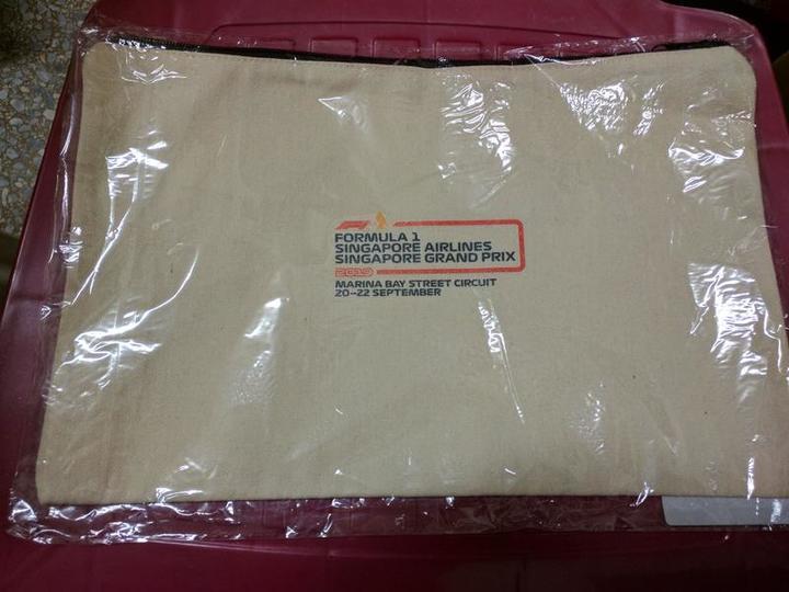 新加坡 F1 賽車 (Singapore Formula 1 Grand Prix) 布製平板/筆電收納袋/保護袋